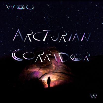 Woo/ARCTURIAN CORRIDOR LP