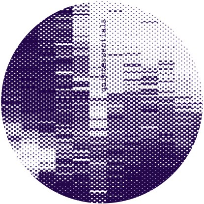 "Greymatter/SANS ROUGE EP 12"""