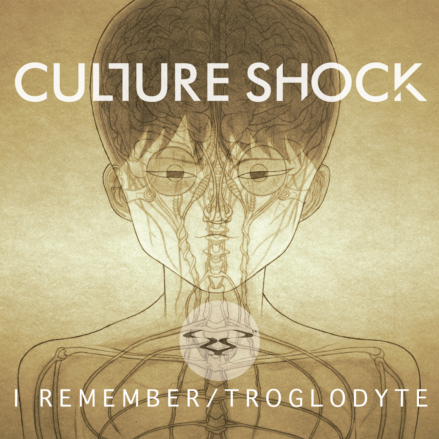 Culture Shock/I REMEMBER 12""