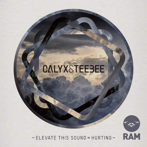 Calyx & Teebee/ELEVATE THIS SOUND 12""
