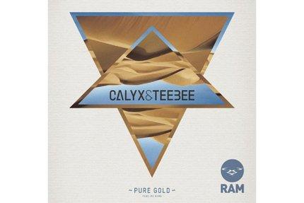 "Calyx & Teebee/PURE GOLD 12"""