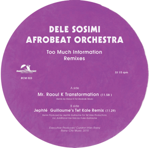 Dele Sosimi/TOO MUCH INFORMATION RMX 12""
