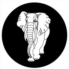 "White Elephant/SIR JOHN (MARK E) 10"""