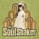 Various/SOULSHAKER VOL.7  CD