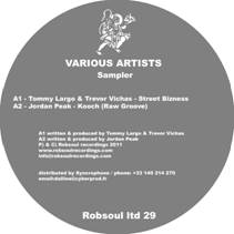 Various/ROBSOUL LIMITED SAMPLER 29 12""