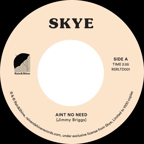 "Skye/AIN'T NO NEED 7"""