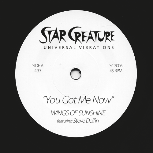 Wings of Sunshine/YOU GOT ME 7""