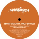 Secret Stealth/BEATFANATIC REMIX 12""