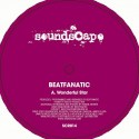 Beatfanatic/WONDERFUL STAR 12""
