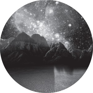 Martin Buttrich/EARTH OF FOXES 12""