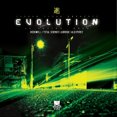 Various/EVOLUTION SERIES VOL. 3 D12""