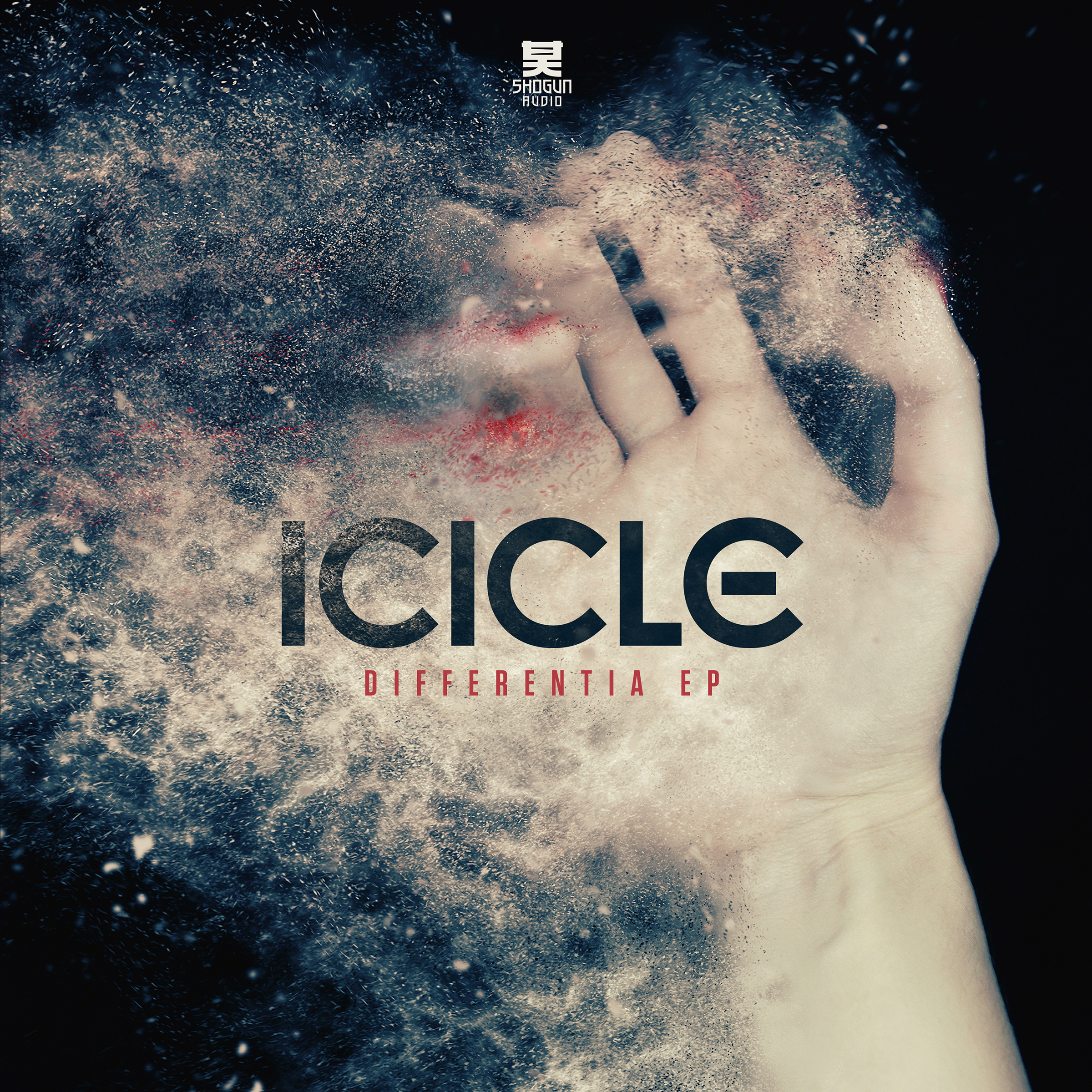 Icicle/DIFFERENTIA EP 12""