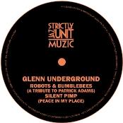 """Glenn Underground/ROBOTS BUMBLEBEES 12"""""""