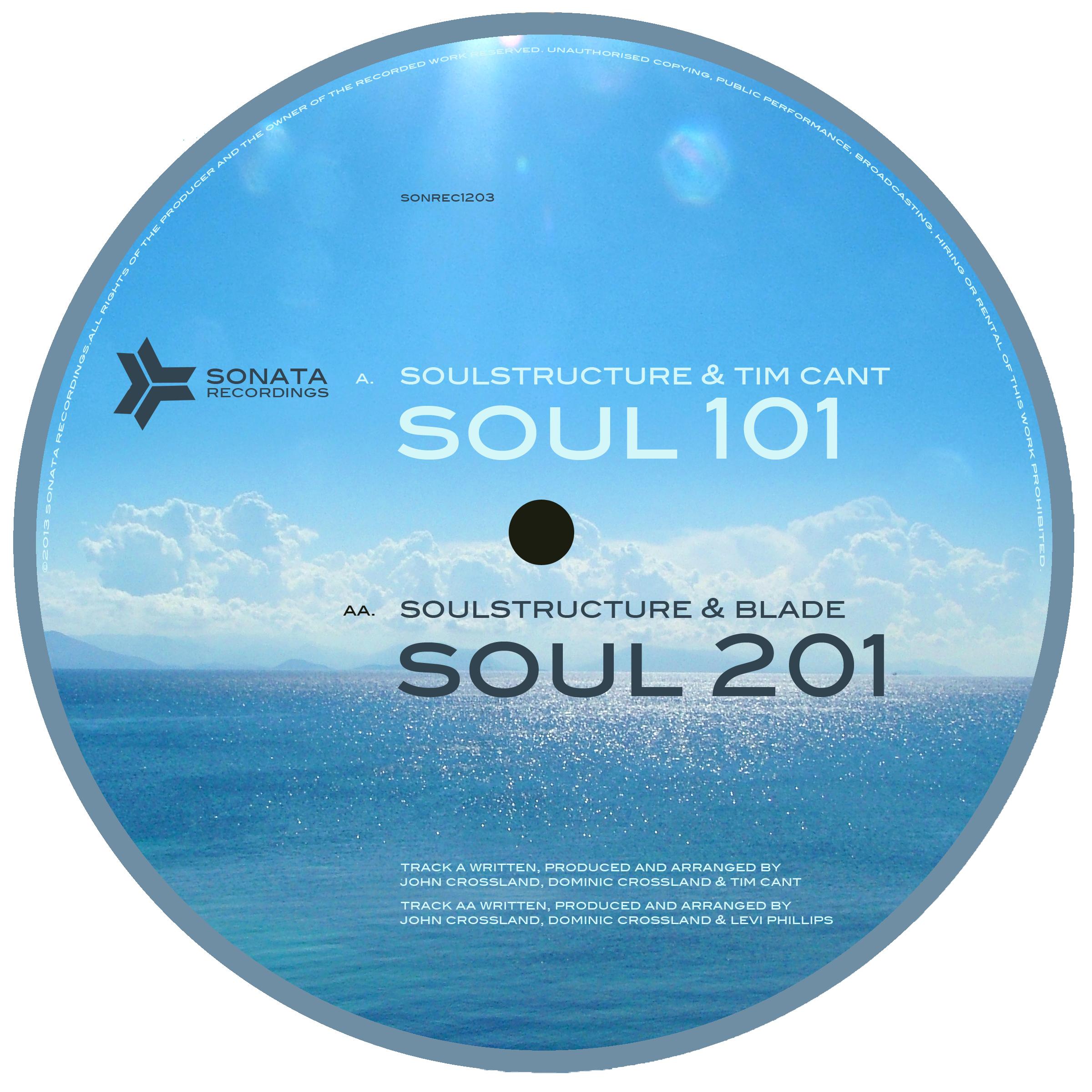 """Soul Structure/SOUL 101 12"""""""