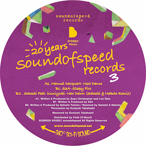 """Various/20 YEARS SOUND OF SPEED V3 12"""""""