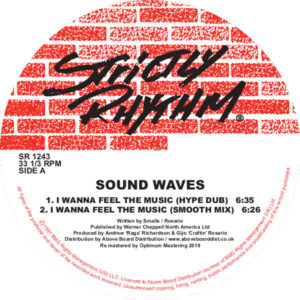 Sound Waves/I WANNA FEEL THE MUSIC 12""