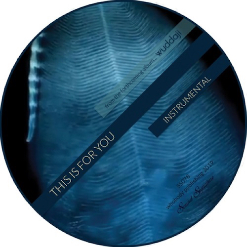 Theo Parrish/THIS IS FOR YOU 12""