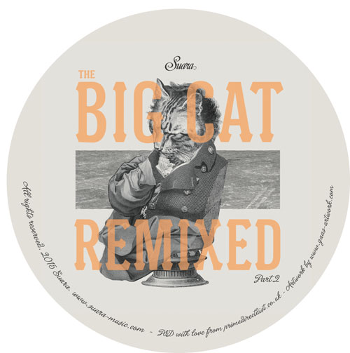 Coyu/BIG CAT REMIXED PART 2 12""