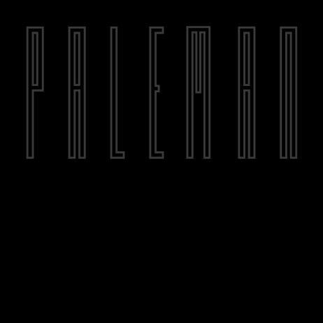 Paleman/THE DAY 12""