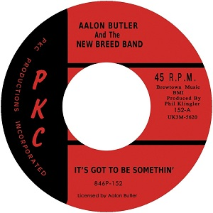 Aalon Butler/IT'S GOT TO BE SOMETHIN' 7""