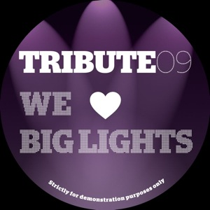 Tribute Edits/#9-WE LOVE BIG LIGHTS 12""