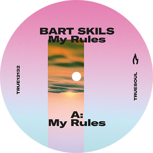 Bart Skils/MY RULES 12""