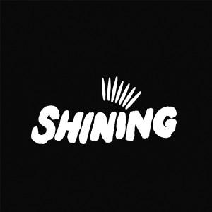 """Shining/WHEEL 12"""""""