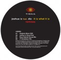 Joshua Iz/IT IZ WHAT IT IZ (REMIXES) 12""