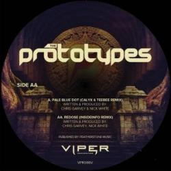 Prototypes/PALE BLUE DOT (C&T RMX) 12""