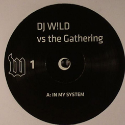 DJ Wild Vs The Gathering/IN MY SYS...12""