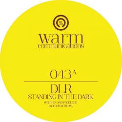 DLR/STANDING IN THE DARK EP 12""