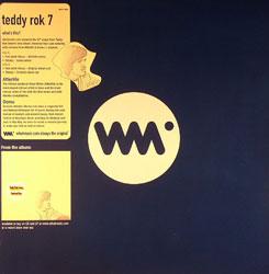 """Teddy Rok 7/FEEL & STEADY REMIXES 12"""""""