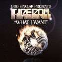 Bob Sinclar/WHAT I WANT 12""