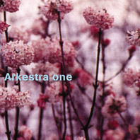 Arkestra One/ARKESTRA ONE CD