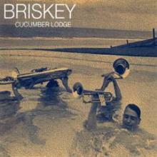 Briskey/CUCUMBER LODGE DLP