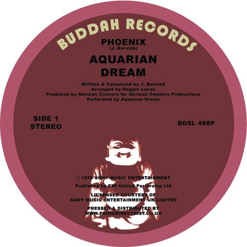 "Aquarian Dream/PHOENIX 12"""