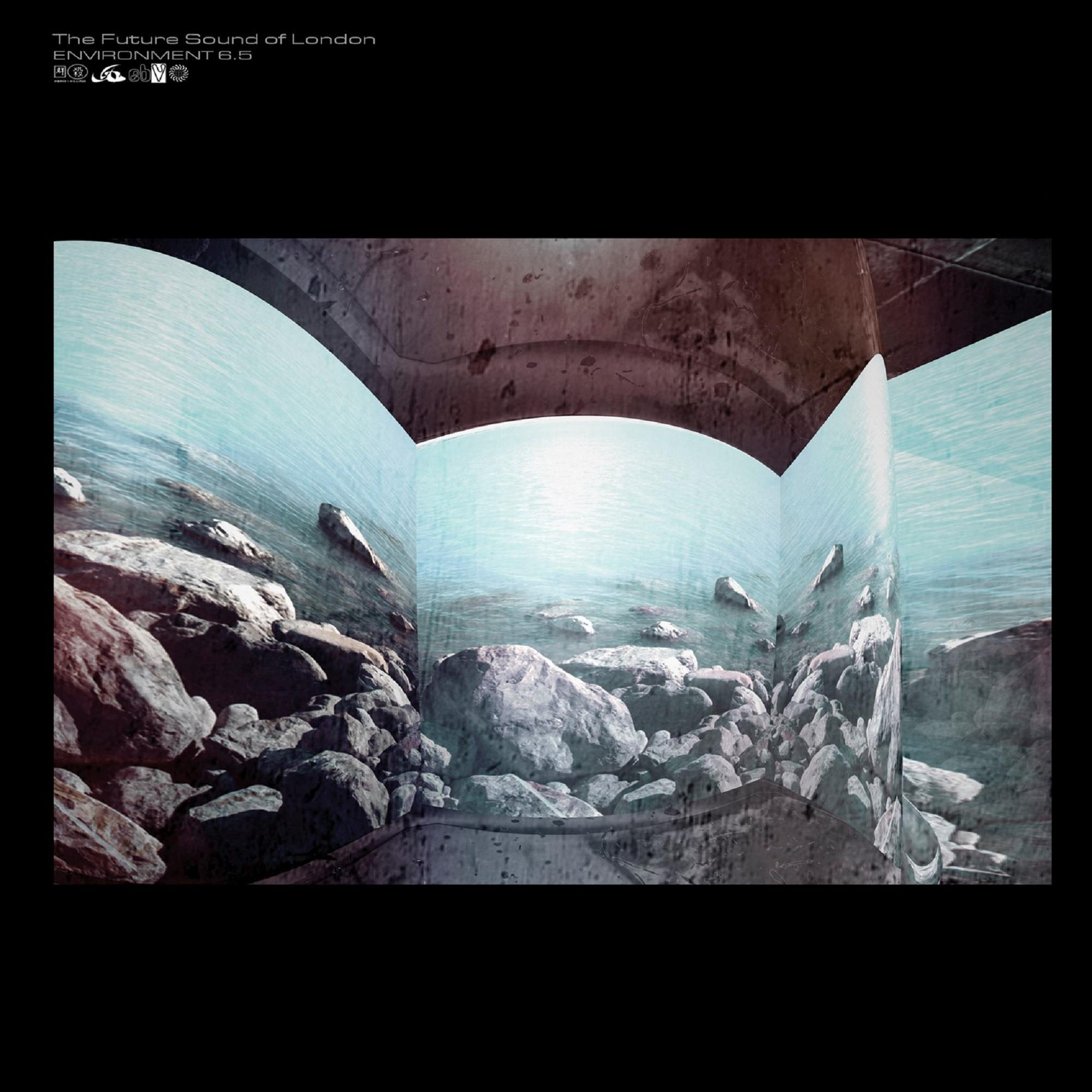FSOL/ENVIRONMENTS VOL 6.5 CD