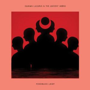 """Damian Lazarus/FEEDBACK LOOP 12"""""""