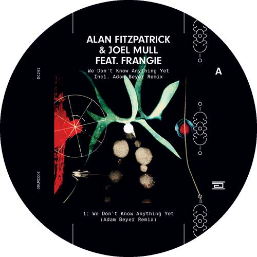 Alan Fitzpatrick/WE DON'T KNOW... 12""