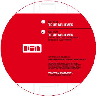 "Nether/TRUE BELIEVER-MARCUS INTALEX 12"""