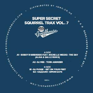 """Various/SUPER SECRET SQUIRREL TRX V7 12"""""""