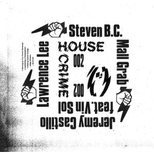 "Various/HOUSE CRIME VOL. 2 12"""