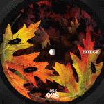 "Hodge/THE FALL 12"""