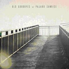 Pajaro Sunrise/OLD GOODBYES  CD