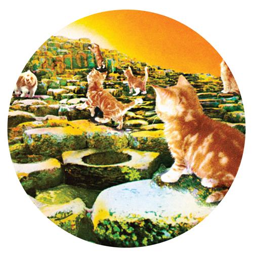 Led Zeppelin/KITTY SLIPMAT