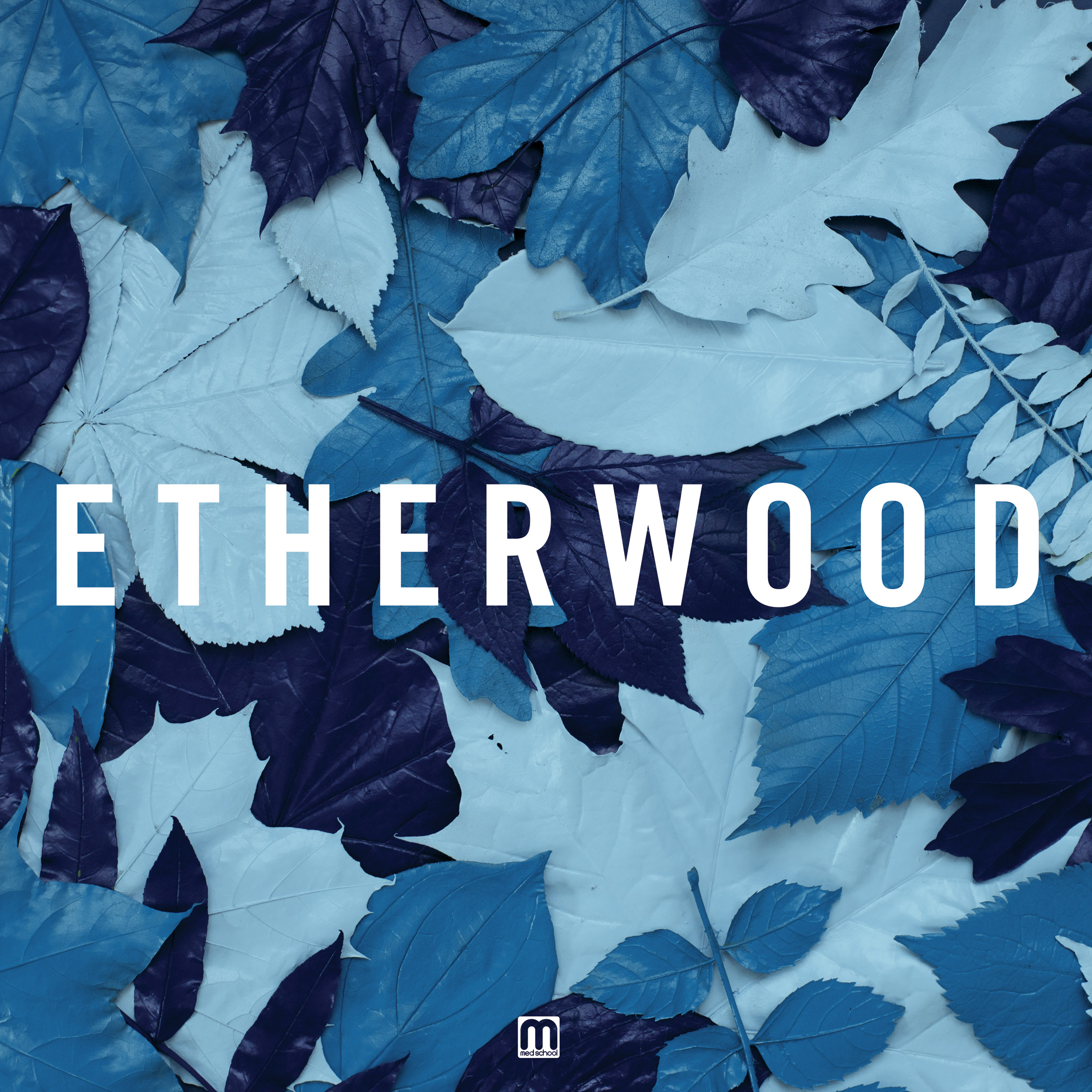 Etherwood/BLUE LEAVES CD