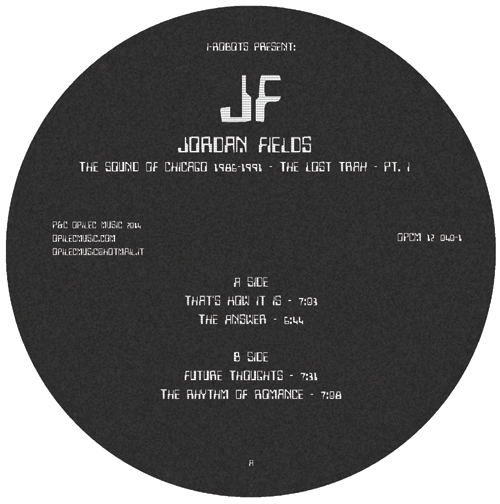 Jordan Fields/THE LOST TRAX PT. 1 12""