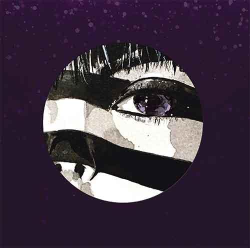 "Purple Disco Machine/FIREWORKS 7"""