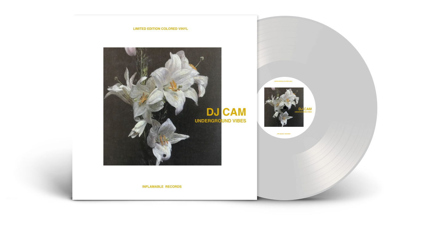 DJ Cam/UNDERGROUND VIBES LP