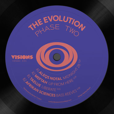 """Various/THE EVOLUTION: PHASE TWO 12"""""""